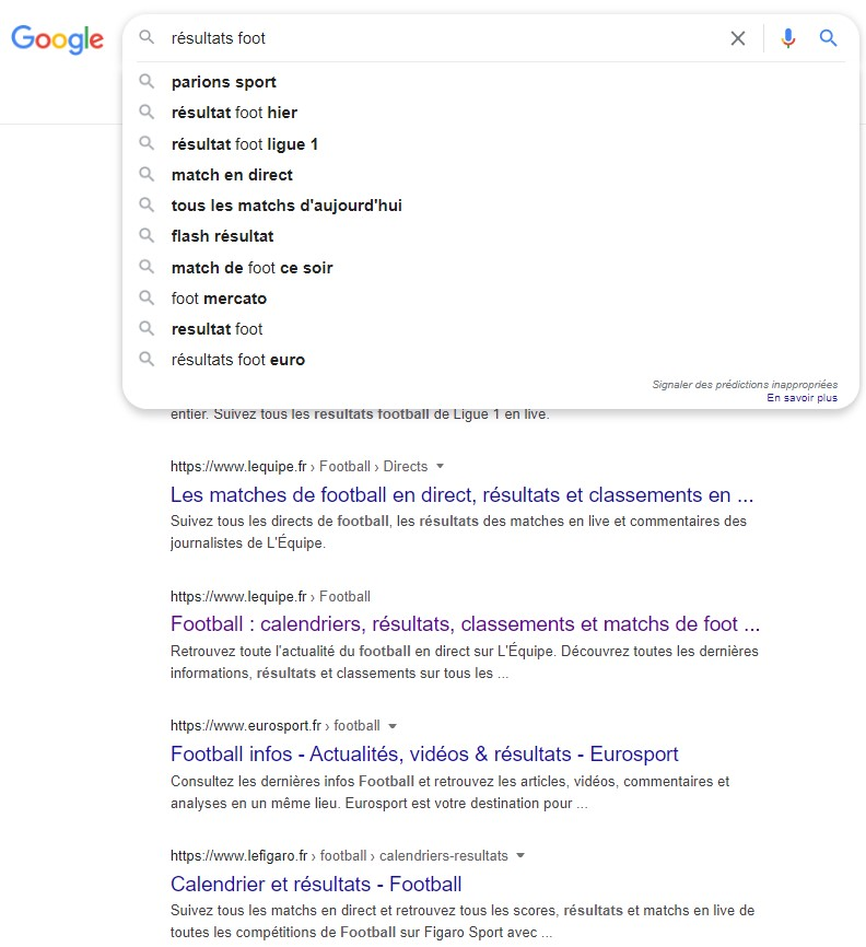 exemple suggestions google